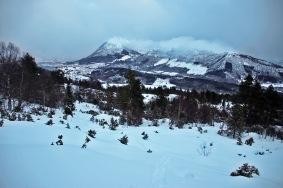 Very nice snow quality!