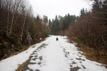 We quickly ran into snow