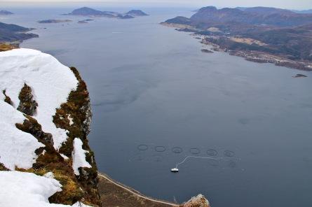 View down from Bjørlykkjehornet
