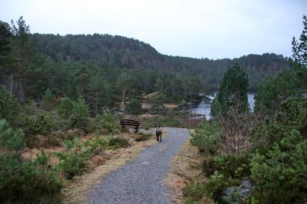 By lake Mausavatnet
