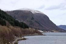 Up the ridge in center