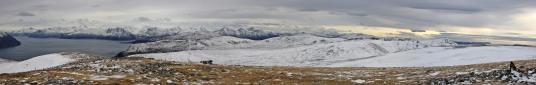 Signalhornet view (2/2)