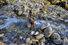 Crossing the creek/river