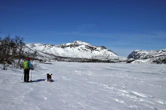 Lake Laksatjørni