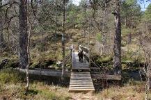 Onto the Kvamsstølen path