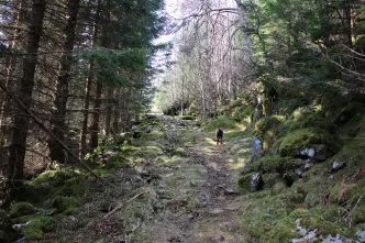 Nice path! Easy to follow