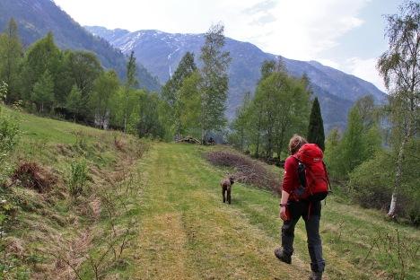 To Stavedalen