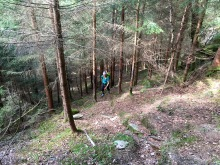 Steep climb up the forest