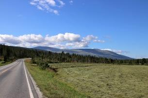 On our way to Håmmålsfjellet
