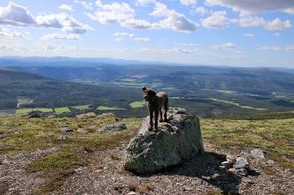 On top of Teldalsvola