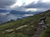 Towards Havåg