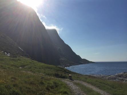 Towards Skolmedalen