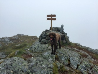 On the cairn (this is not the high point)