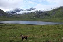 Towards Gravfjellet