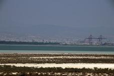 Limassol Salt Lake