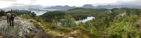 View from Rødlandstua