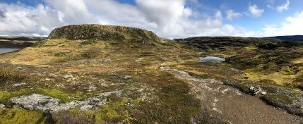 Nice terrain for walking