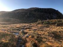 Towards Sandvikhornet