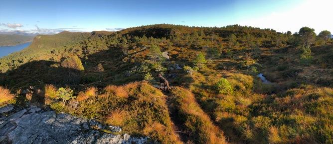 Towards Høgkubben