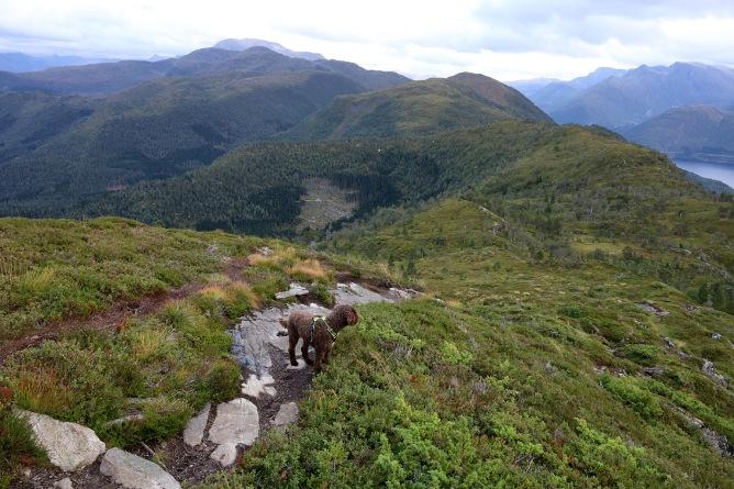 Descending to Rotevatnet