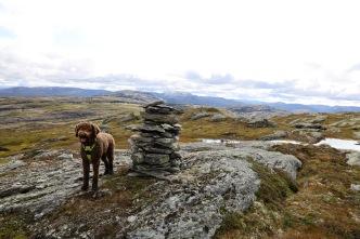 On top of Hundeggi