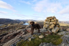 On top of Raudberg
