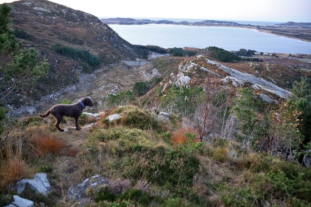 On the Middagstua ridge