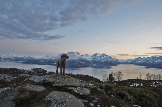 On top of Leirvågfjellet
